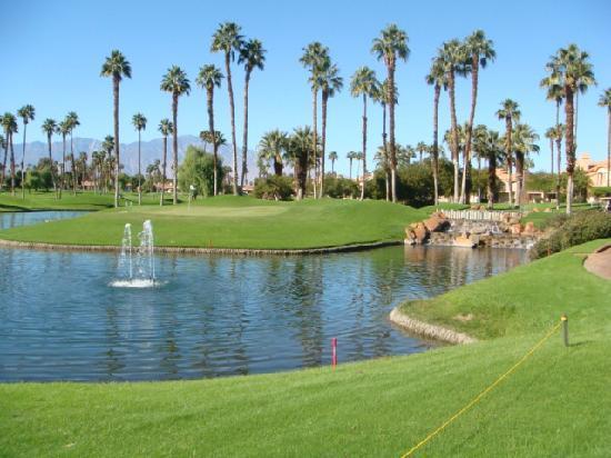 Palm Desert Ca Real Estate Market